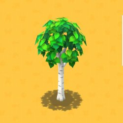 screenshot_20180605-194155_pocket camp7237711276962215189..jpg
