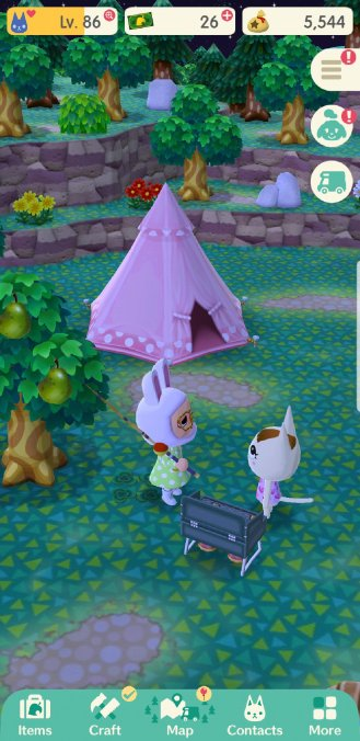 screenshot_20180620-215241_pocket camp1864883743795230518..jpg